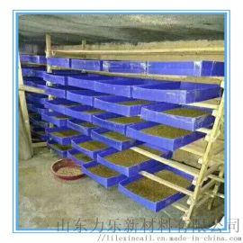 面包虫养殖盒 黄粉虫养殖盒 塑料盒