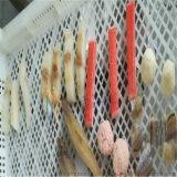 糖醋里脊肉片裹漿機@裏脊肉片裹漿油炸生產線
