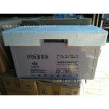 雙登6-GFM-100 12V100AH 直流屏UPS/EPS電源 鉛酸免維護蓄電池