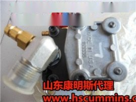 Commins配件3042378机油泵康明斯NTA855总成