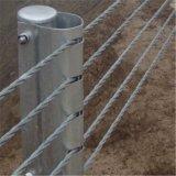 公路缆索护栏厂家、柔性绳索防撞栏、五索护栏