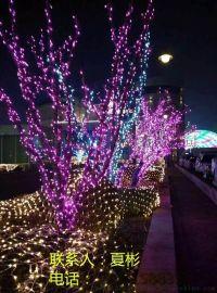 真树缠灯树木亮化灯饰画厂家春节装饰