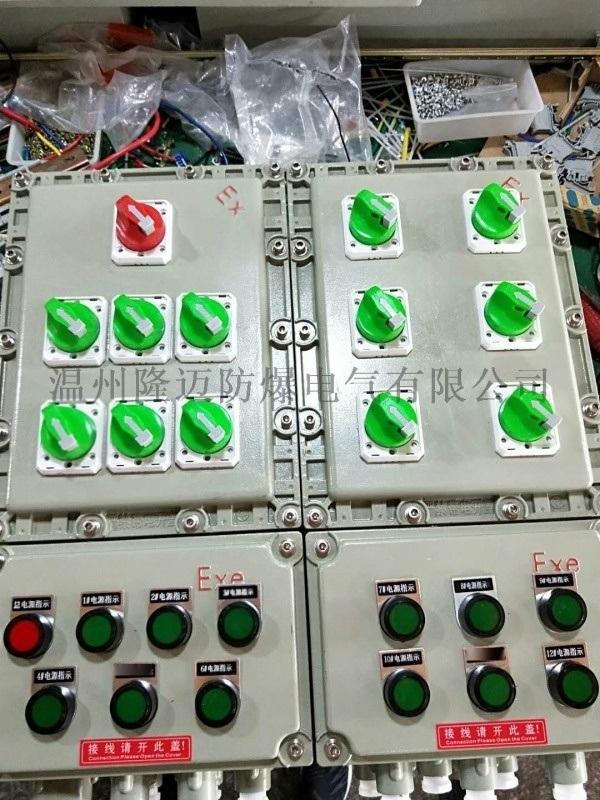 防爆照明配電箱/600X450X200