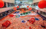 親子互動項目百萬海洋球池火遍全國