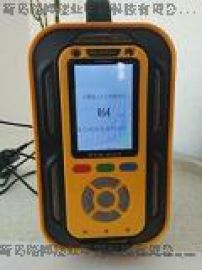 手提式检测复合型气体的分析仪