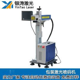 金属自动化激光打标机 连续器自动化激光喷码机