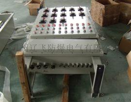 BQX52-11防爆变频调速器/箱