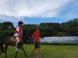 深圳骑马怎样让马快速奔跑起来