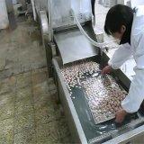直销丸子成型机 丸子蒸煮流水线 蟹卷全自动蒸煮机