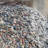 貴州哪余有鵝卵石_鵝卵石貴州廠家_銷售批發。