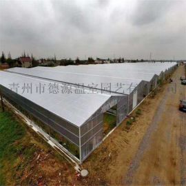 阳光板温室 农业大棚施工 德源温室