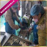 小银鱼粘浆机厂家 银鱼上浆裹糠生产线