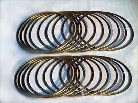 FYE50-300金属密封叠环