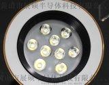 照明射燈; LED天花燈