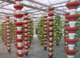 跌碗式立柱基质栽培
