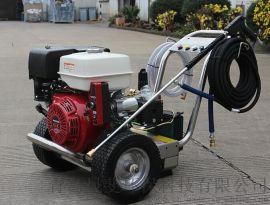 意大利AR泵本田汽油机根雕去皮用小型高压水枪清洗机