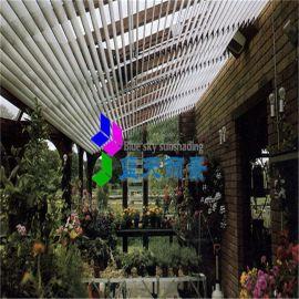 蓝天丽景 欧式百叶 屋面采光顶遮阳百叶