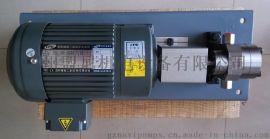 东莞供胶定量泵聚酰亚胺纤维齿轮泵