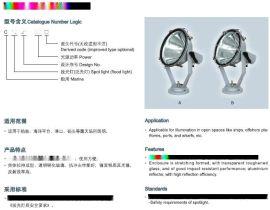 船用投光燈CTG21-500 CCS船檢認證