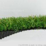 东营人造草坪代理商,山东幼儿园草坪经销