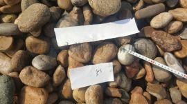 鹅卵石滤料**  砾石滤料厂家 多少钱