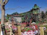 北京绿雕公司 五色草雕塑 植物墙 卡通绿雕厂家