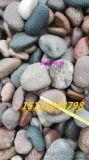 太原鹅卵石滤料   永顺水厂用鹅卵石大量生产