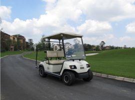 成都朗動封閉型2座電動高爾夫球車