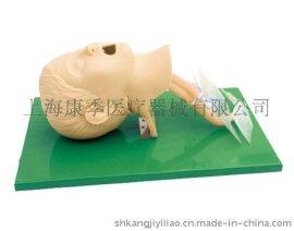 **儿童气管插管模型