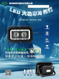 家明节能 冷库灯,LED冷库专用照明灯,投光灯家明厂家