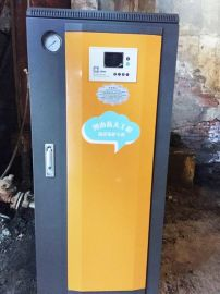 河南温县连珠台浴城供暖用电蒸汽锅炉,煤锅炉改造100KW电蒸汽发生器