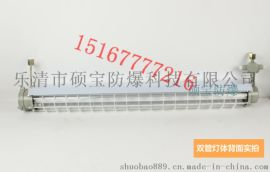 BAY51-H吸頂燈 36W防爆環形熒光燈
