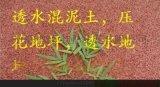 彩色透水地坪,上海譽臻地坪新材料科技公司
