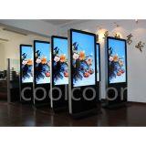 南京酷彩55寸落地式触摸广告机液晶显示面板