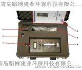 MVI汞蒸汽检测仪华北地区代理商电话多少