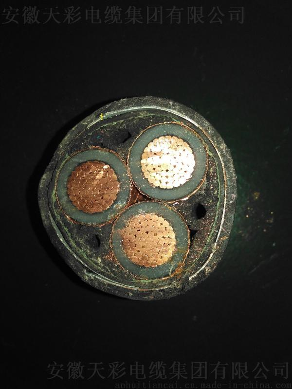 交聯聚乙烯絕緣聚 乙烯護套電力電纜