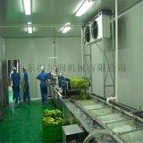 山东专业 蔬菜水果清洗风干线 果蔬去皮清洗成套设备