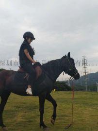 騎馬啦(鵬城k9馬術俱樂部)