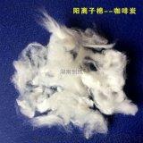 湖南创纯咖啡炭纤维棉