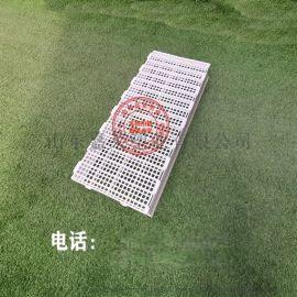 塑料漏粪板 养殖鸡用漏粪板