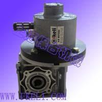 气动马达配蜗轮蜗杆减速机