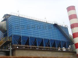 二十吨燃煤锅炉袋式脉冲除尘器