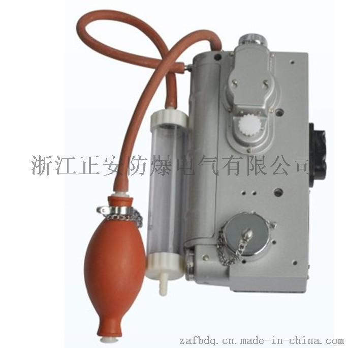 CJG10光干涉式甲烷测定仪器 二氧化碳气体检测
