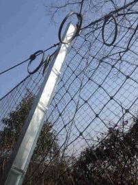 主动边坡防护网 SNS柔性防护网