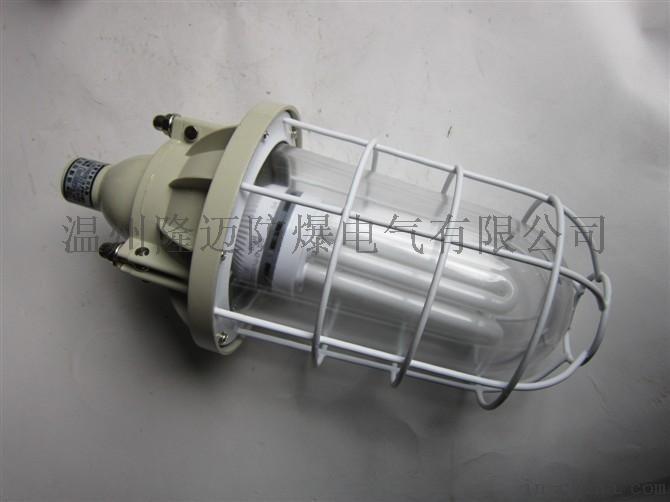 BAD-40/55/65W防爆節能燈