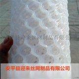 养殖塑料网 白色塑料网 圈地塑料网