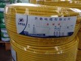 供应WDZ-VV 3*4+1*2.5齐鲁电缆