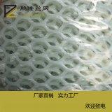 鵬隆 塑料平網 養蠶網 養蜜蜂網 養雞網