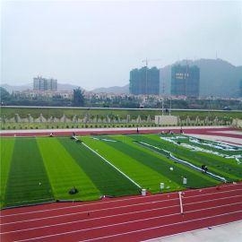 广州时宽专业生产人造草坪,足球场景观绿化,运动休闲场所,仿真草塑料草幼儿园假草庭院楼顶