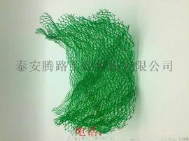 厂家直销EM4三维植被网,护坡环保三维植被网